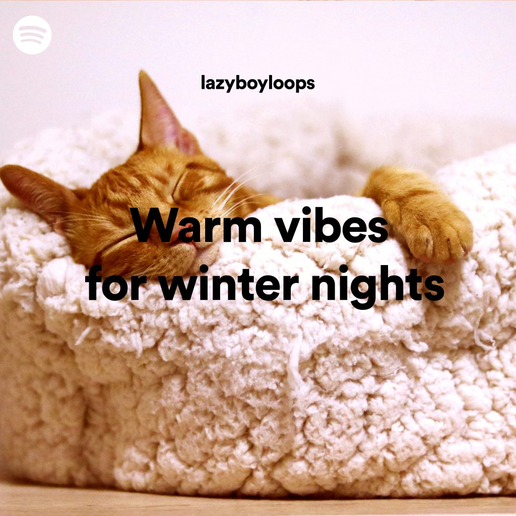 Cover image for the warm lofi Spotify playlist Warm vibes for winter nights curated by lazyboyloops. The image features a sleeping ginger cat on a warm fluffy bed.